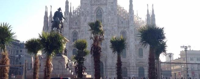 ecco-le-palme-in-piazza-duomoe-milano-si-divide-che-centrano_15c801bc-f39c-11e6-8adb-946bb960b487_998_397_big_story_detail